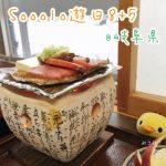 Sooolo遊日8+5(04)- 21號岐阜縣