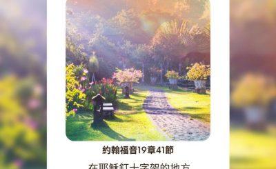 Soooradio每日靜.聽.想(537) - 花園還是曠野 2021-09-19