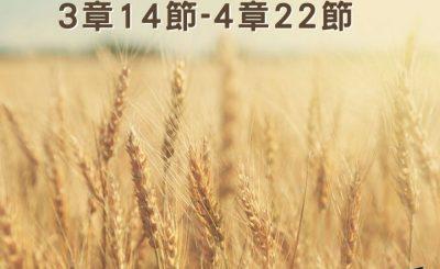 Soooradio穿越聖經(362) - 〈路得記〉3章14節-4章22節